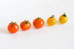 Red and yellow tomatos in row. Unequal quantity Royalty Free Stock Images