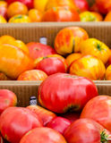 Red and yellow tomatos. Red and yellow tomatoes in cardboard boxes and the Clement Street Farmers Market in San Francisco stock image