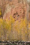 Red and yellow troglodyte dwellings in Dahkmar, Mustang. Dahkmar red cliffs, with its troglodyte caves and trees in autumn colors. Vertical view Royalty Free Stock Photo