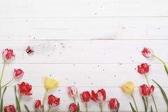 Red, yellow tulips and butterfly in wooden background. Spring flowers composition for postcard. Red, yellow tulips and butterfly in wooden background royalty free stock photo