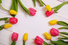Red and yellow tulips flowers  on light wooden Stock Photos