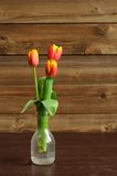 Red and yellow tulips in glass bottle on wooden background Stock Photography