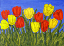 Red an yellow tulips Royalty Free Stock Image