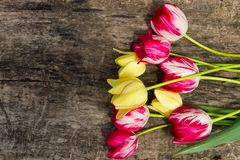 Red and yellow tulips on rustic wooden background Stock Photography