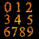 Red Yellow Vibrant Leaves Font Numbers stock illustration