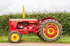 A red and yellow vintage david brown tractor Stock Photography