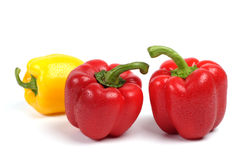 Red and yellow wet sweet pepper. Red and yellow sweet pepper on a white background stock images