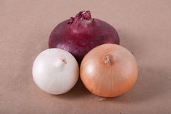 Red, yellow and white onions Stock Photography