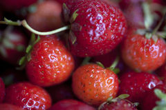 Red yummy strawberry closeup background Royalty Free Stock Image