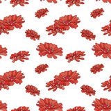 Red zinnias pattern Royalty Free Stock Photography