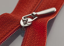 Red zipper Stock Photography