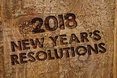 Redacte el Año Nuevo \ las 'del texto 2018 de la escritura resoluciones de S Concepto del negocio para la lista de metas o de bla Fotografía de archivo libre de regalías