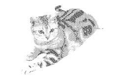 Redacte el gato mezclado para ser figura del gato, con estilo de la tipografía, isola libre illustration