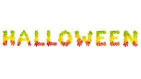 Redacte HALLOWEEN hecho de las hojas de arce del otoño en colores brillantes Fotografía de archivo libre de regalías