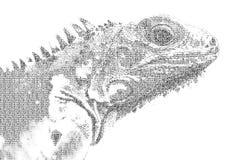 Redacte la iguana mezclada para ser figura de la iguana, con estilo de la tipografía, libre illustration