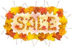 Redacte la venta con el marco hecho de hojas de arce brillantes Fotos de archivo libres de regalías