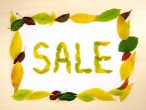 Redacte la VENTA hecha de las hojas de otoño dentro del marco de las hojas de otoño en el fondo de madera Plantilla de Autumn Sal Foto de archivo