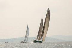 Redactiemaxi yacht rolex cup Stock Foto