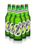 Redakcyjna fotografia pięć zimnych butelek Tuborg zieleni piwo z kroplami odizolowywać na bielu Obrazy Royalty Free