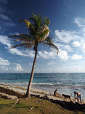 Redakcyjni ludzie na plażowej Kukurydzanej wyspie Nikaragua Ameryka Środkowa obraz stock