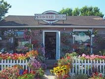 Redakcyjny kwiatu sklep na magistrali St Montauk autostradzie Montauk Nowy Jork obrazy stock