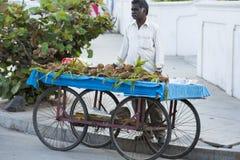 Redaktörs- illustrativ bild Shoppa av frukter och grönsaker Arkivbild