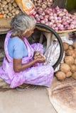 Redaktörs- illustrativ bild Shoppa av frukter och grönsaker Royaltyfri Bild
