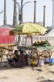 Redaktörs- illustrativ bild Shoppa av frukter och grönsaker Fotografering för Bildbyråer