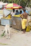 Redaktörs- illustrativ bild Shoppa av frukter och grönsaker Arkivfoto