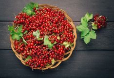Redberries, currants, in a basket on dark wooden table. Top view Royalty Free Stock Images