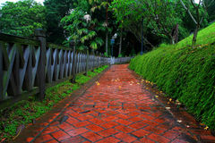 Redbrick path to forest Stock Image