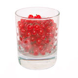 Redcurrant. Glass of a red currant on a white background Royalty Free Stock Image
