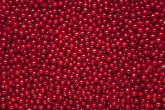 Redcurrant background Stock Images