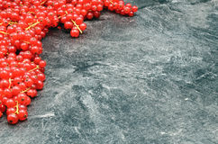 Redcurrant berries on black background. Close up Stock Photos