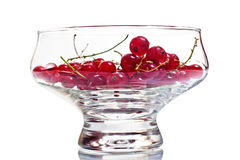 Redcurrant berries in a glass bowl Stock Image