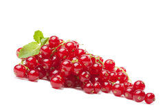 Redcurrant berries isolated Stock Photography