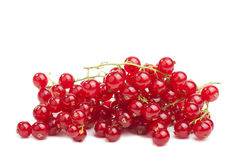 Redcurrant berries isolated Royalty Free Stock Images