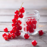 Redcurrant branch close to a glass jar Stock Images