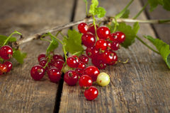 Redcurrant branch on wooden table Stock Photography