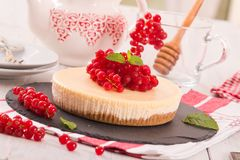 Redcurrant cheesecake. Stock Images