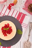 Redcurrant cheesecake. Stock Photography