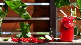 Redcurrant fresh juice stock video