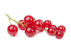 Redcurrant isolated Stock Photo
