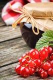 Redcurrant jam and fresh berries Stock Image