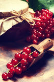 Redcurrant jam and fresh berries Royalty Free Stock Photos