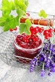 Redcurrant jam Stock Photo