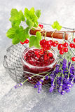 Redcurrant jam Royalty Free Stock Images