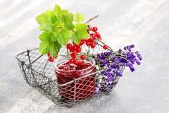 Redcurrant jam Stock Image