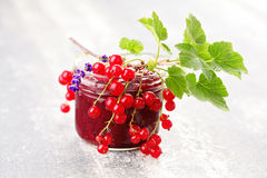 Redcurrant jam Royalty Free Stock Photography