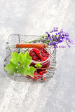 Redcurrant jam Stock Photography